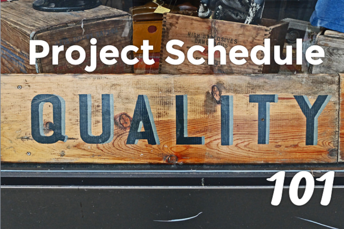 microsoft project schedule quality