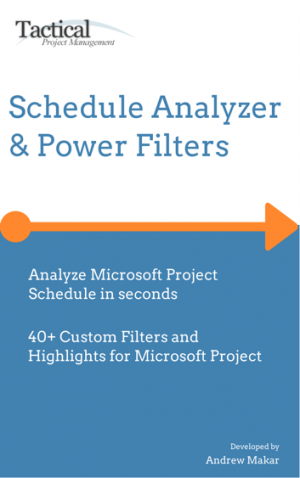 Microsoft Project Custom filters